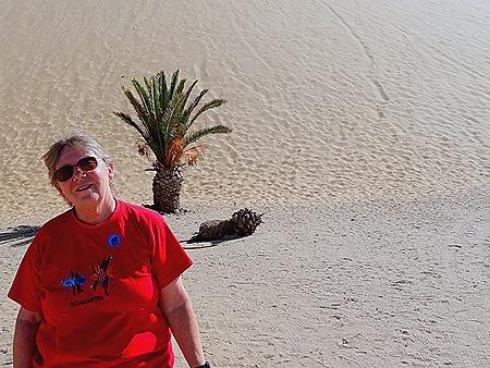 218. Walvis Bay, Namibia080418
