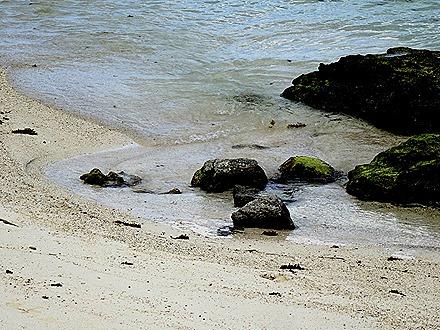 222. Victoria, Mahe, Seychelles