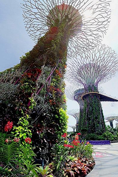 254a. Singapore (Day 2)_stitch