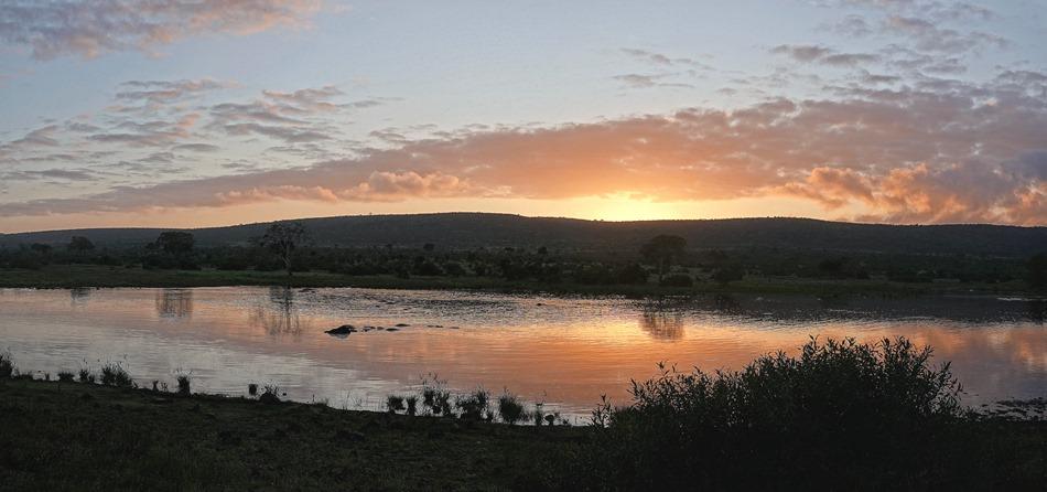 29a. Kruger Nat Park, South Africa_stitch