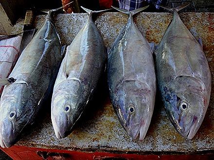 32. Victoria, Mahe, Seychelles