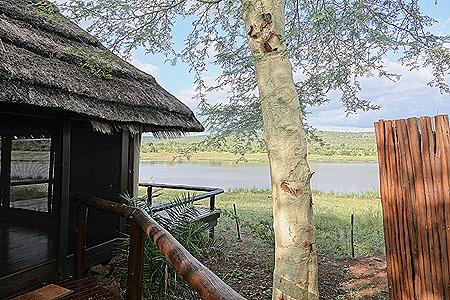 464. Kruger Nat Park, South Africa