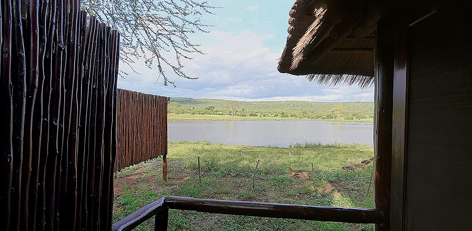 473a. Kruger Nat Park, South Africa_stitch
