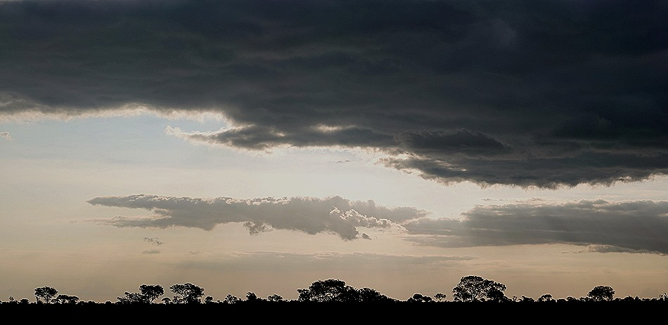 489a. Kruger Nat Park, South Africa_stitch