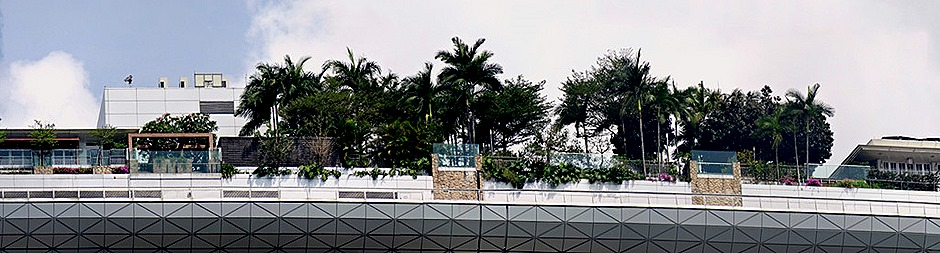 49a. Singapore (Day 2)_stitch