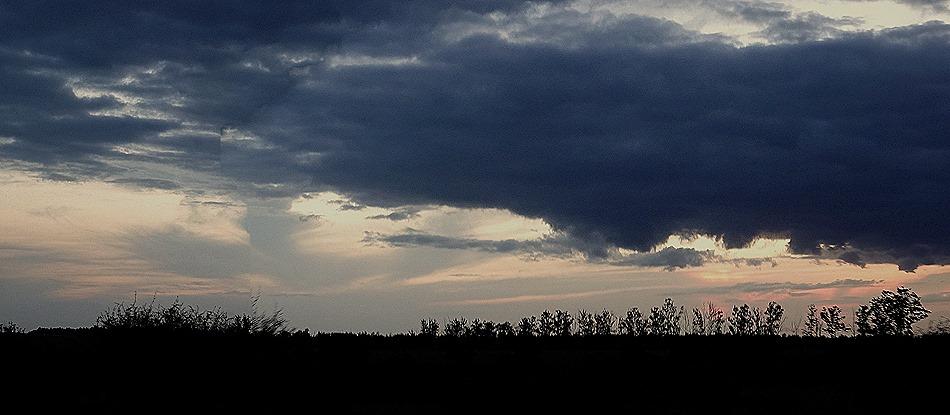 548b. Kruger Nat Park, South Africa_stitch