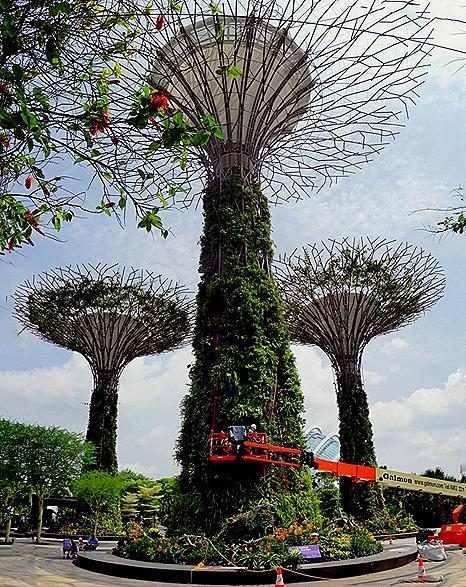 73a. Singapore (Day 2)_stitch