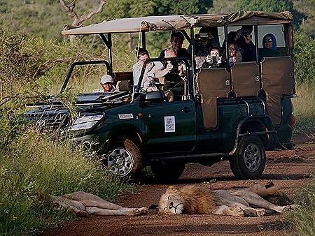 92. Kruger Nat Park, South Africa