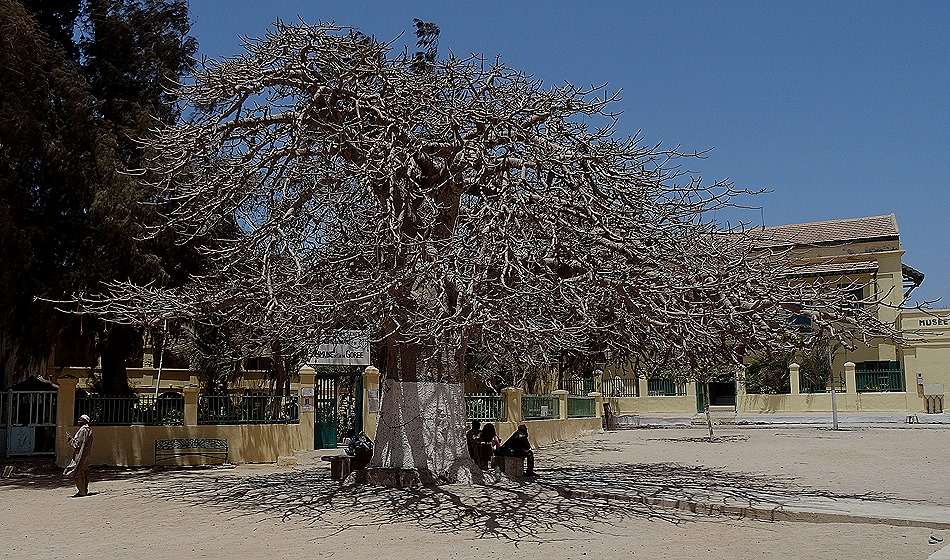147. Dakar, Senegal