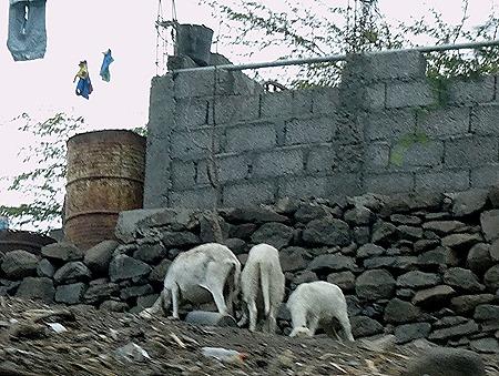 168. Praia, Cabo Verde