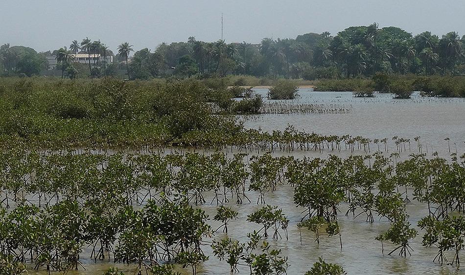 56. Banjul, The Gambia