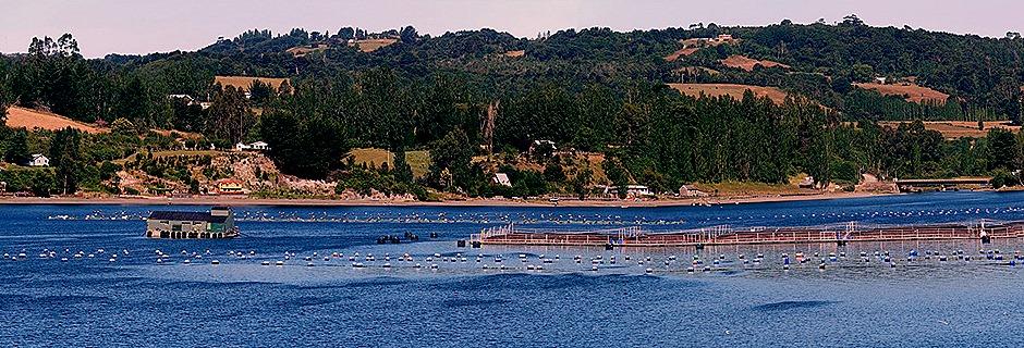 10a. Isla Chiloe (RX10), Chile_stitch