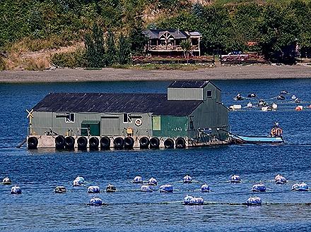 12. Isla Chiloe (RX10), Chile