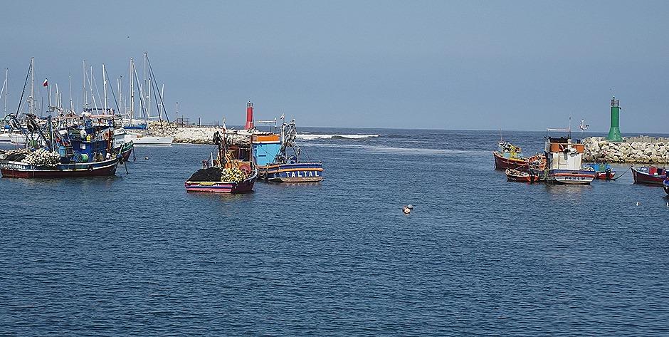 33. Antofagasta, Chile