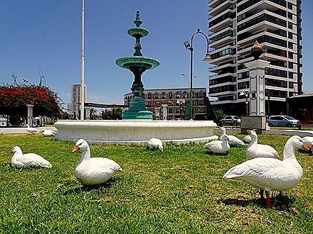49. Iquique, Chile
