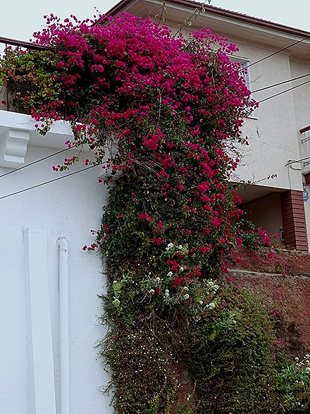 6. San Antonio (Valparaiso), Chile