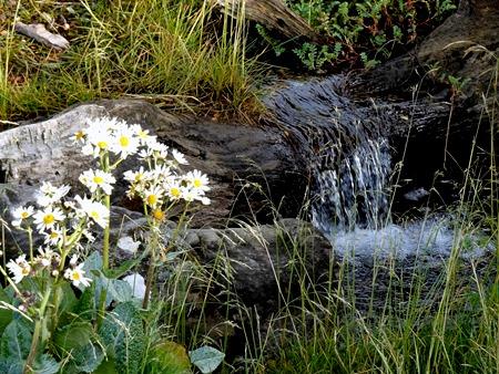 13. Ushuaia