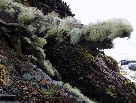 20. Ushuaia