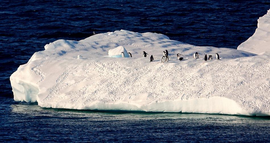 144. Antarctica (Day 1) edited