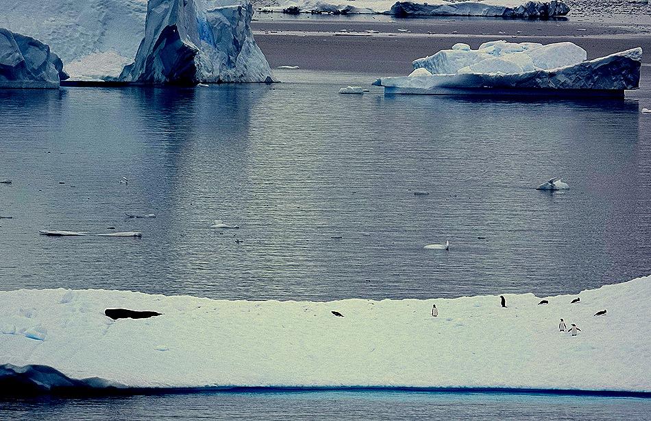 144. Antarctica (Day 2)