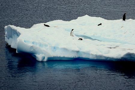 148. Antarctica (Day 2)