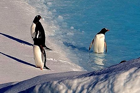 159. Antarctica (Day 1) edited