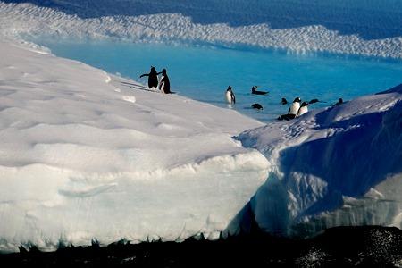 163. Antarctica (Day 1) edited