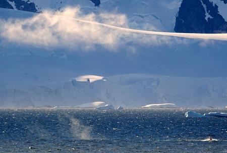 188. Antarctica (Day 1) edited