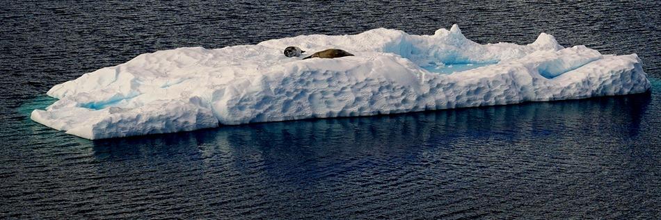 277. Antarctica (Day 1) edited