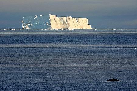 34. Antarctica (Day 1) edited