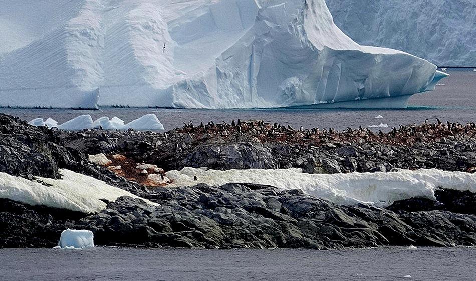 638a. Antarctica (Day 1) edited_stitch