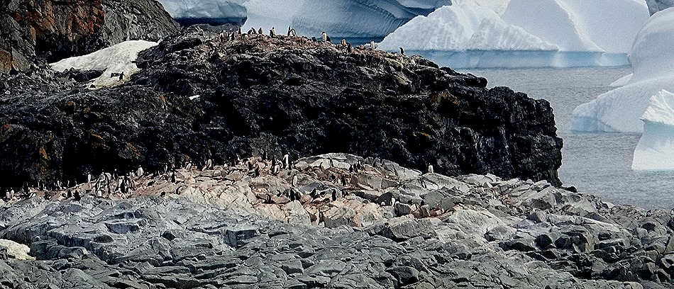 641. Antarctica (Day 1) edited