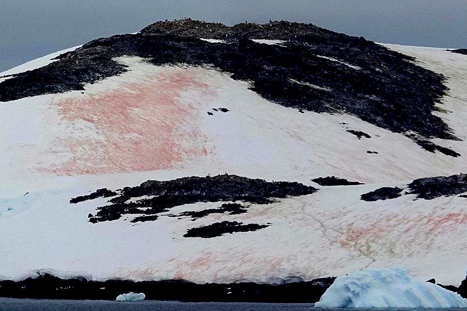 654a. Antarctica (Day 1) edited_stitch