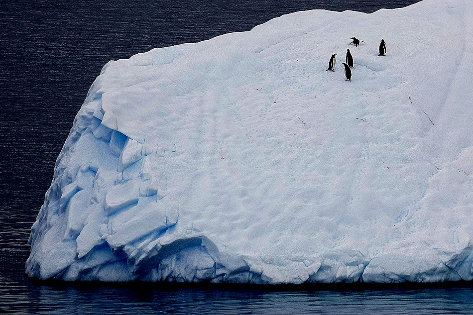 96. Antarctica (Day 2)