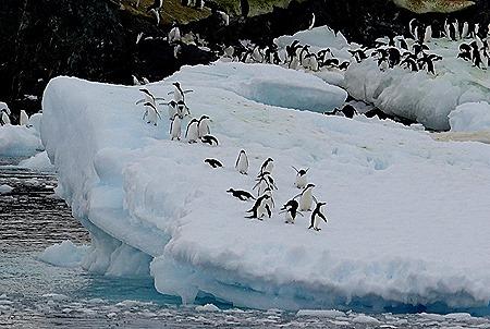 106. Antarctica (Day 3)