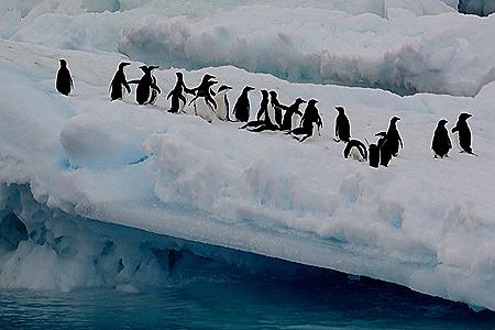 121. Antarctica (Day 3)
