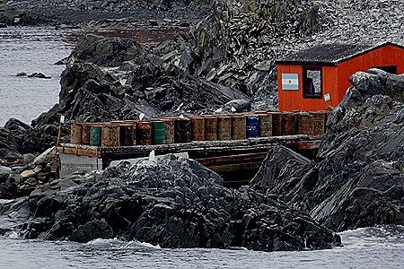 174. Antarctica (Day 3)