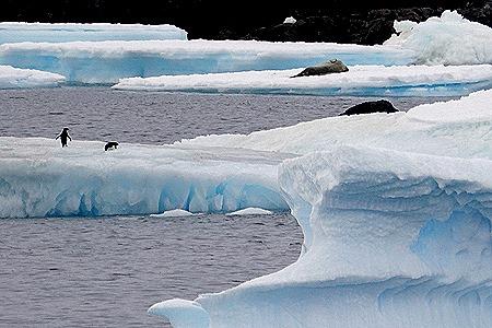 177. Antarctica (Day 3)