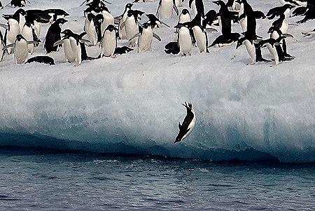 224. Antarctica (Day 3)
