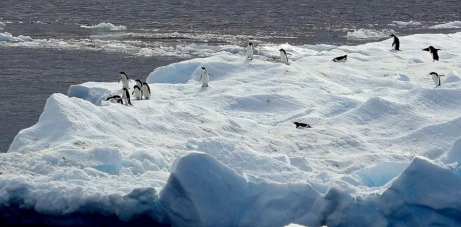 285. Antarctica (Day 3)