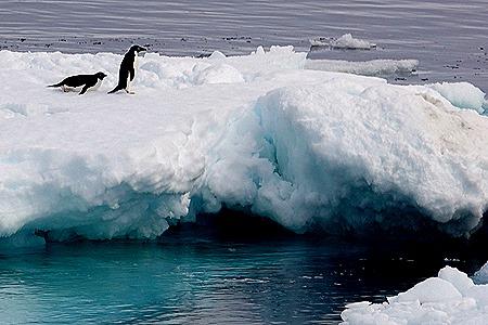 292. Antarctica (Day 3)