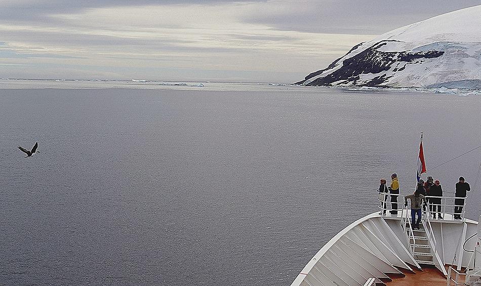 313. Antarctica (Day 3)