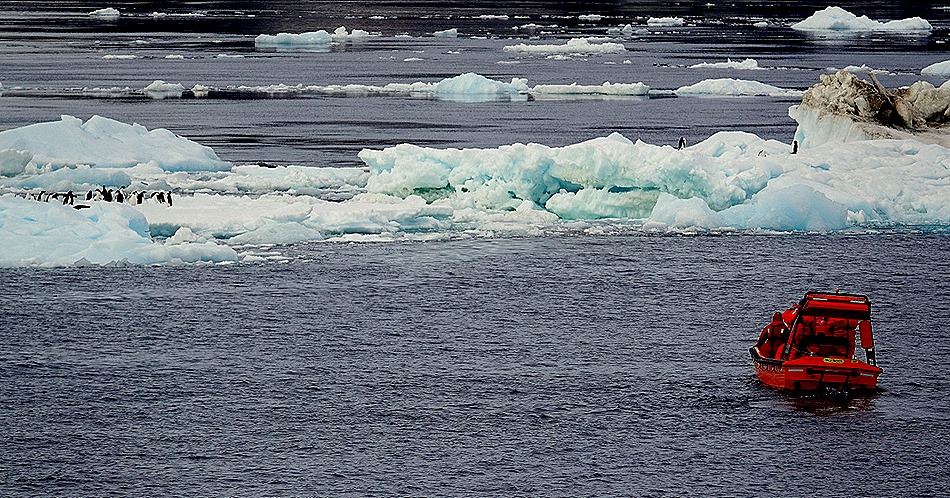 360. Antarctica (Day 3)