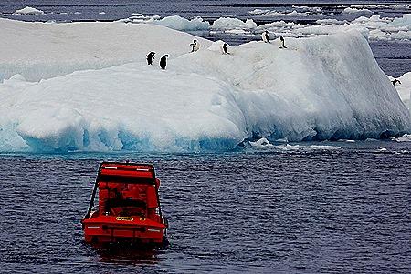 361. Antarctica (Day 3)