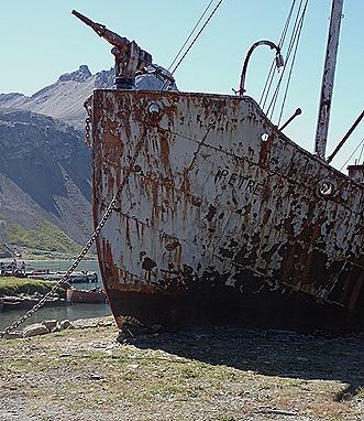 12. Grytviken Mary