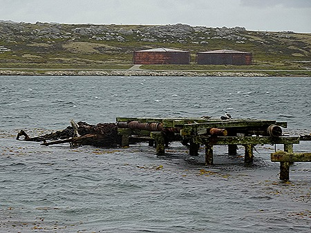 156. Stanley, Falkland Islands