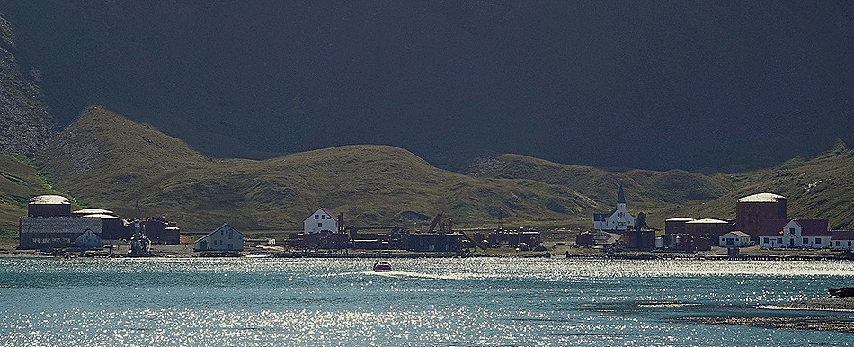 229. Grytviken, S Georgia Island