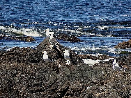 107. Punta del Este, Uruguay