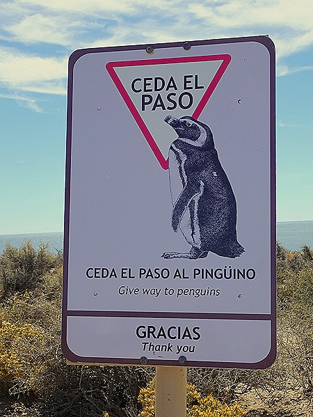 113. Puerto Madryn