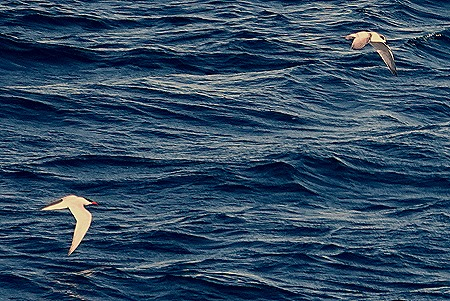 20. Puerto Madryn